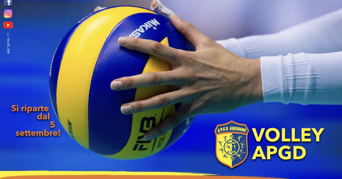 Volley APGD.001